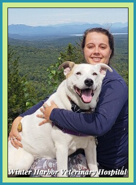 sheri martin technician with cam at winter harbor veterinary hospital